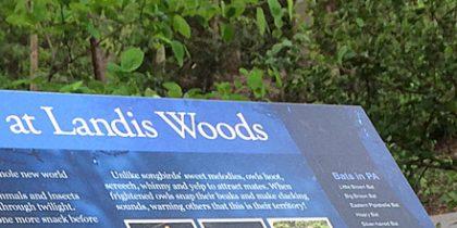 Landis Woods Park Nature Trail Informational Signage
